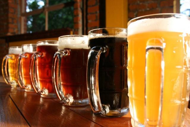 Cervejaria promete o melhor emprego do mundo