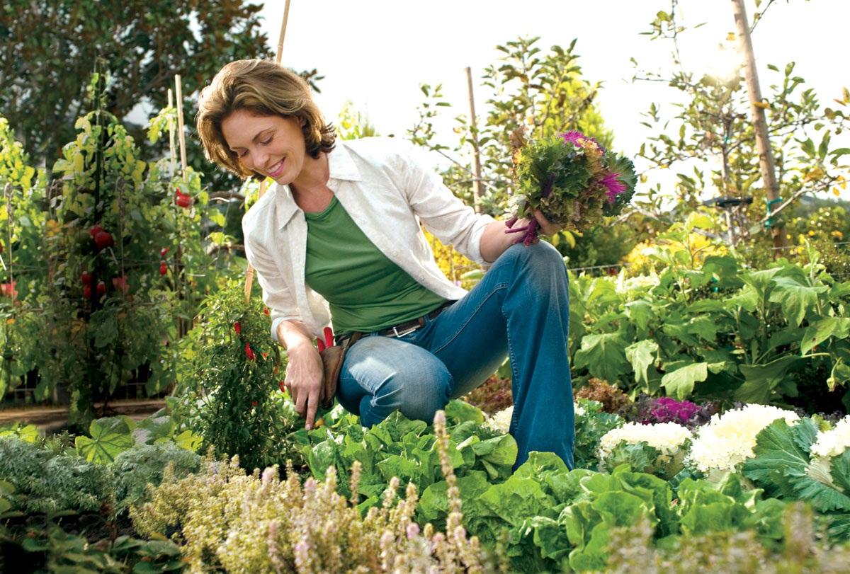 carreira jardinagem